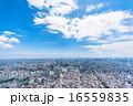 東京の街並み 16559835