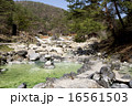 草津温泉 西の河原公園② 16561503