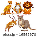 Animals 16562978