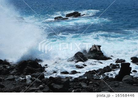 大島 海岸 波  16568446
