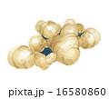 根菜類 土生姜 香辛料のイラスト 16580860