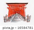 京都 伏見稲荷の鳥居 手描きイラスト 16584781