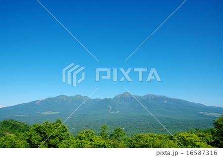 平沢峠から眺めた八ヶ岳 16587316
