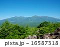 平沢峠から眺めた八ヶ岳 16587318