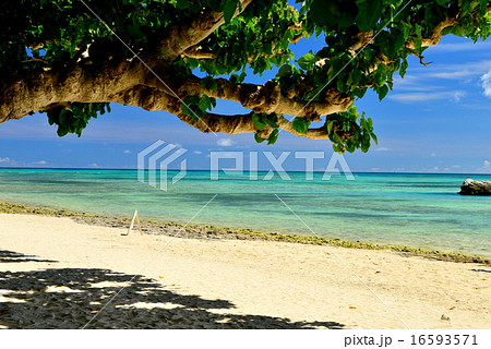 竹富島 カイジハマの風景 16593571