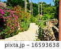 石垣 集落 竹富島の写真 16593638