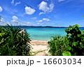 沖縄の離島 鳩間島の風景写真 16603034