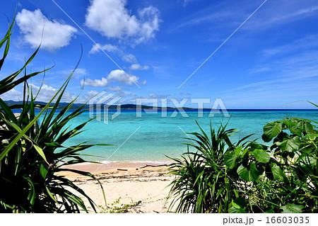 沖縄の離島 鳩間島の風景写真 16603035
