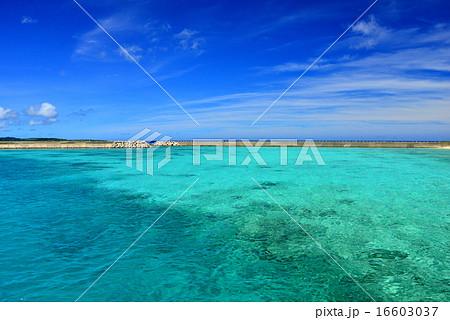 沖縄の離島 鳩間島の風景写真 16603037