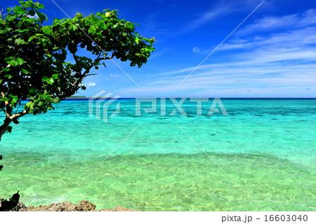 沖縄の離島 鳩間島の風景写真 16603040