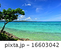 離島 鳩間島 海の写真 16603042
