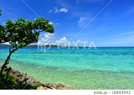 沖縄の離島 鳩間島の風景写真 16603042