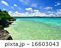 離島 鳩間島 海の写真 16603043