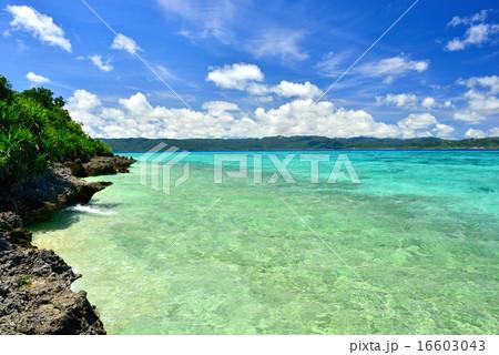 沖縄の離島 鳩間島の風景写真 16603043