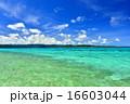 沖縄の離島 鳩間島の風景写真 16603044