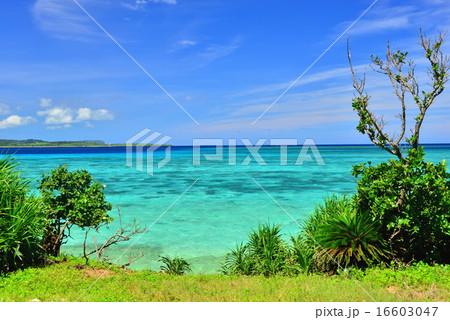 沖縄の離島 鳩間島の風景写真 16603047
