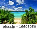 離島 鳩間島 海の写真 16603050