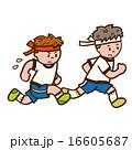 体操服で走る男の子2人 16605687