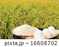 おにぎり 米 稲穂の写真 16608702