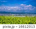 島田市 大井川 町並みの写真 16612013
