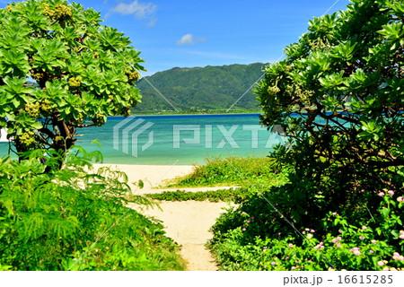 小浜島 細崎ビーチの風景写真 16615285