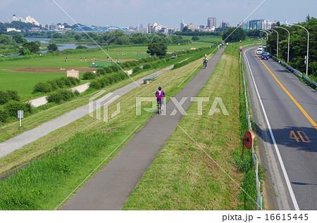 多摩川サイクリングロードと多摩沿線道路 16615445
