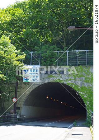 長野~新潟県境 国道148号 湯原トンネル(縦) 16621874