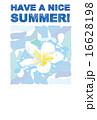プルメリア テンプレート 暑中見舞いのイラスト 16628198