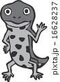 アカハライモリキャラクター風グレー 16628237