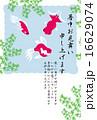 暑中見舞い 水草 テンプレートのイラスト 16629074