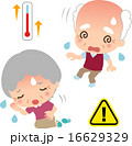 熱中症になった高齢者 16629329