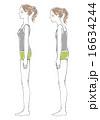 比較 猫背 姿勢のイラスト 16634244