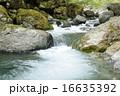 河川 川 渓谷の写真 16635392