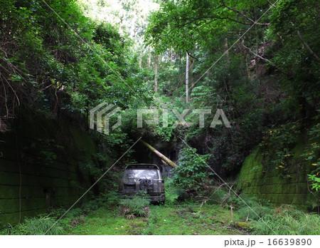 【千葉県】廃国道410号線の三島隧道前に捨てられたランドクルーザー 16639890