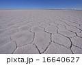 ウユニ塩原の塩の模様 16640627
