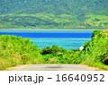 小浜島 海 道の写真 16640952