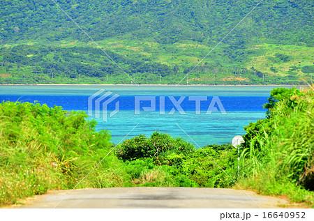 沖縄 小浜島の道がある風景 16640952