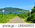 沖縄 小浜島の道がある風景 16640953