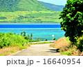 小浜島 海 道の写真 16640954