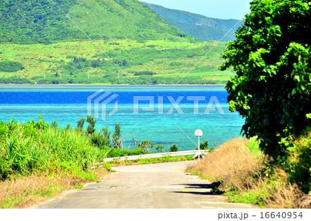 沖縄 小浜島の道がある風景 16640954