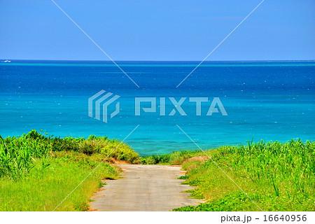 沖縄 小浜島の道がある風景 16640956