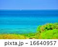沖縄 小浜島の道がある風景 16640957