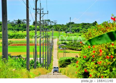 沖縄 離島 小浜島の風景写真 16641140