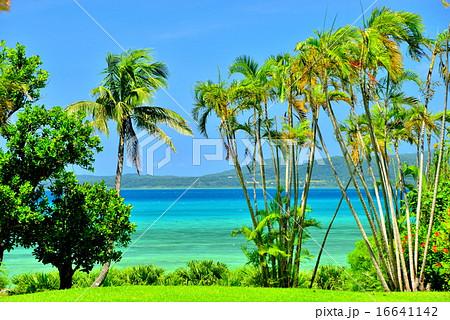 沖縄 離島 小浜島の風景写真 16641142