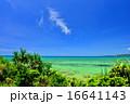 離島 小浜島 海の写真 16641143
