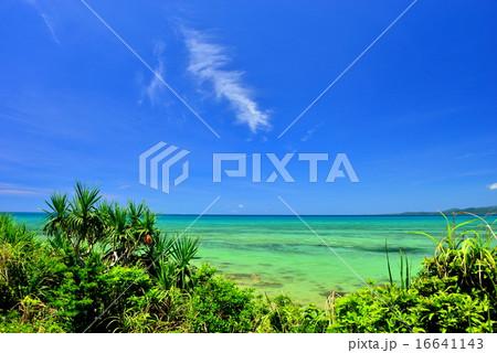 沖縄 離島 小浜島の風景写真 16641143