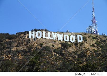 ハリウッド 16656058