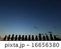 イースター棟のモアイ達 16656380