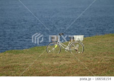 自転車 16658154