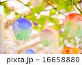 江戸風鈴 16658880